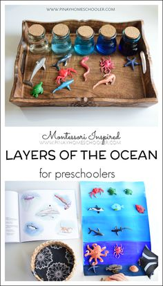 Inspired Layers of the Ocean for Preschoolers Use this acitivity with Zoology 2 - Swimming Creatures of the Fifth Day! Use this acitivity with Zoology 2 - Swimming Creatures of the Fifth Day! Montessori Science, Montessori Classroom, Montessori Toddler, Preschool Science, Science For Kids, Learning Activities, Preschool Activities, Vocabulary Activities, Earth Science
