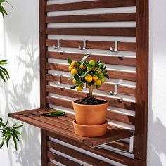 ÄPPLARÖ Wall shelves, outdoor - brown stained brown - IKEA these could be interesting in . Ikea Applaro, Outdoor Storage Bench, Staining Wood, Outdoor Shelves, Interior Wood Trim, Shelves, Pergola Kits, Ikea, Wall Paneling