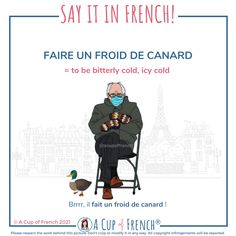 Basic French Words, French Phrases, French Quotes, French Language Lessons, French Language Learning, French Lessons, Learn French Fast, How To Speak French, French Teaching Resources