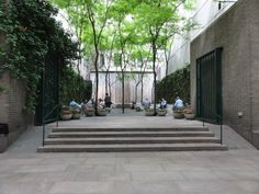 Paley Park in NYC - Pocket Park
