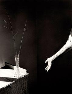 Photo Lounge: We love photography Vintage Photography Women, Floral Photography, Still Life Photography, Artistic Photography, Black And White Photography, Poema Visual, Madrid, Exquisite Corpse, Surrealism Photography