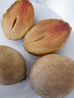 Sapodilla- best fruit ever