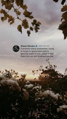 Another Shawn Mendes facts*on hiatus* Druhá časť knihy… – Unique Wallpaper Quotes Aesthetic Quotes Tumblr, Tumblr Quotes, Quote Aesthetic, Lyric Quotes, Qoutes, Motivational Quotes, Aesthetic Images, Mood Wallpaper, Tumblr Wallpaper
