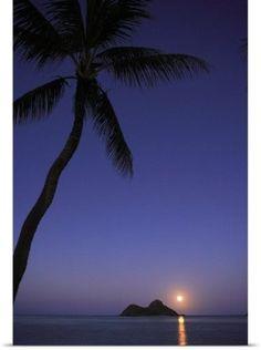 Tomas Del Amo Poster Print Wall Art Print entitled Hawaii, Oahu, Lanikai, Full Moon Rising Over One Of The Mokulua Islands, None