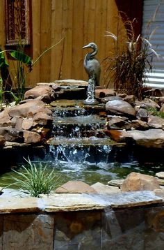 Backyard Pond with Waterfall