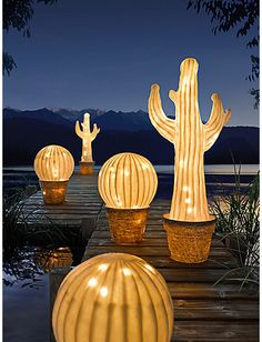 Shop online for all your Cactus and Succulent must haves. Our selection of decorative planters will help you add plenty of personality to your space. Cactus Paint, Deco Cactus, Decoration Cactus, Ideas Terraza, Outdoor Lighting, Outdoor Decor, Deco Originale, Decorative Planters, Lampe Led