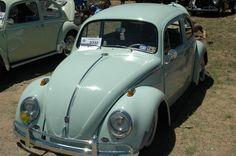 Cali-bug