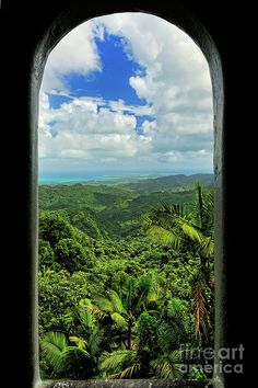Yokahu Tower - El Yunque - Puerto Rico Canvas Print / Canvas Art by JH Photo… Dream Vacations, Vacation Spots, Rio Grande, Ricos World, Beautiful Islands, Beautiful Places, Oh The Places You'll Go, Places To Visit, El Yunque Rainforest