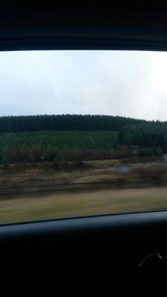 Green. Scotland.