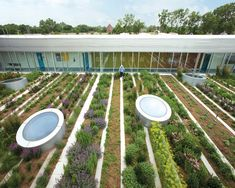 The Gary Comer Youth Center Roof Garden - Google Search