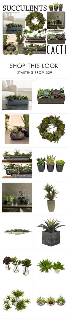 """Decorate with Succulents & Cacti"" by jackie22 ❤ liked on Polyvore featuring interior, interiors, interior design, home, home decor, interior decorating, Crate and Barrel, Zodax, Nearly Natural and West Elm"