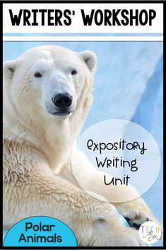 Winter expository writing unit with research, projects, and unit plans. For kindergarten through 2nd grade.  $
