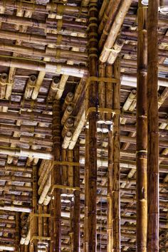 World Architecture Festival 2014: clustered lengths of bamboo create a forest of columns in the open-air dining room of this Vietnam restaurant by Vo Trong Nghia Architects