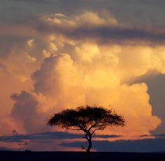 Sunset on the Mara