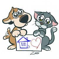 SOS Animal  com amor: Como ajudar uma ONG  que  cuida de animais  abando...
