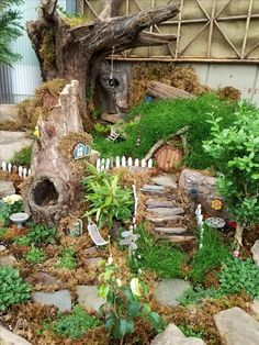 Elegant Diy Fairy Gardens A garden is never finished, it is really a development that improvements from time to season and year to year. Hamster Diy Cage, Gerbil Cages, Hamster Care, Hamster Toys, Fairy Garden Plants, Fairy Garden Houses, Gnome Garden, Fairy Gardens, Hamster Habitat