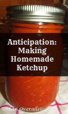 Are you a ketchup fan, but tired of the store-bought kind? Well, consider making your own at home. Yes, you can make homemade ketchup. Skip the cans and use fresh tomatoes. Heinz Ketchup Recipe, Homemade Ketchup, Homemade Sauce, How To Make Homemade, Food To Make, How To Make Ketchup, Sauces, Canning Tomatoes, Fermented Foods