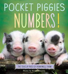 Pocket Piggies Numbers!- Children's Book