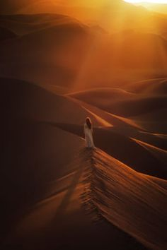 TJ Drysdale (tjdrysdale) Photos / 500px Best Movie Websites, Lightroom Presets, Good Movies, Lgbt, Deserts, Handsome, Film, Boys, Man Men