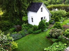 Garden and white garden shed