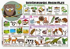 Espacio de PT: Material para describir a personas, objetos, animales y paisajes