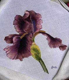 Purple Bearded Iris-Needle Painting Embroidery