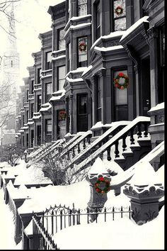 Christmas in Carroll Street ( my neighborhood) Brooklyn, New York. NYC New York City Travel Honeymoon Backpack Backpacking Vacation Winter Szenen, Winter Time, Winter Season, Brooklyn New York, New York City, Brooklyn Brownstone, Brooklyn Baby, New York Noel, New York Weihnachten