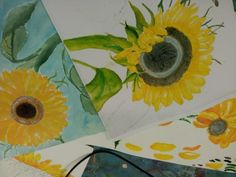 Sunflowers excellant
