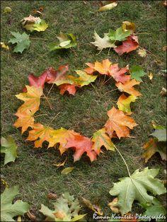 Leaf heart #Coastal Autumn & Thanksgiving