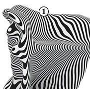 shopping mode et décoration tendance effets d'optique   Page 2