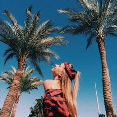 Bildergebnis für fotoideen palmen