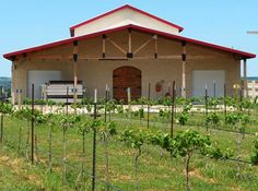 Woodrose Winery in Stonewall Texas.
