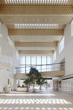 Angle of repose: Bendigo Hospital Architecture Design, Healthcare Architecture, Architecture Awards, Healthcare Design, Victorian Architecture, Facade Design, Concept Architecture, Design Design, Modern Hospital