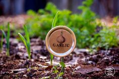 Put #masonjar lids to good use with these cute upcycled plant labels from The Prudent Garden.