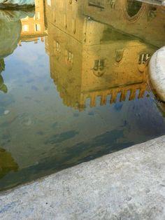 Acqua di Nettuno