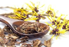 natural remedies for varicose veins Witch Hazel For Scalp Psoriasis - Many a times, people forget that the scalp is essentially skin too It can get affected with the regular skin issues too – scalp psoriasis being one of them. Home Remedies For Acne, Acne Remedies, Natural Home Remedies, Psoriasis Remedies, Hair Remedies, Herbal Remedies, Best Witch Hazel, Witch Hazel Toner, Natural Remedies