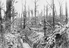 Un soldado francés camina por una trinchera en medio de un devastado terreno en…