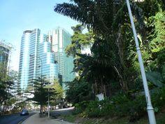 Kuala Lumpur  I like this city!
