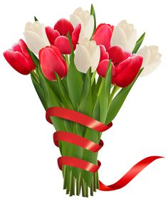 White and Red Tulips with Ribbon PNG Clipart Image