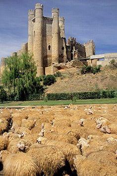 Castle in Valencia de Don Juan. León province. Spain