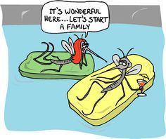 87 Best Silly Mosquito Jokes Images Humor Jokes Quotes Humour