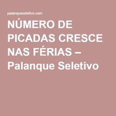 NÚMERO DE PICADAS CRESCE NAS FÉRIAS – Palanque Seletivo