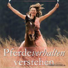"""""""Pferdeverhalten verstehen"""" von Susanne Kreuer"""