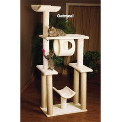 Cat Furniture | Cat Trees, Scratching Post, Towers. This is great for us who have cats and dogs! Cats should always have a place to go where doggies won't tick them off.