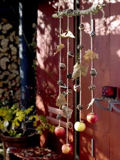 using twine, a branch from the yard(or grapevine wreath), and various items to tie on: leaves, large nuts, pine cones, candles, and even small fruit.  They each provide a wonderfully rustic accent to your entertaining space.
