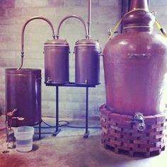 New England Distilling #still #gin #rum #maine http://www.pressherald.com/blogs/theroot