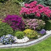 Comment faire un massif de fleurs | In every gardener there ...