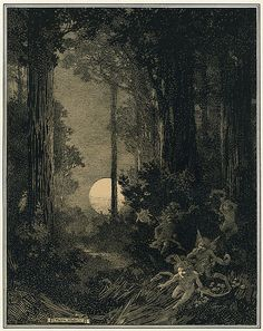 """Moonrise in a Wood"" illustration by Franklin Booth"