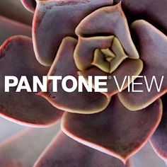 Pantone has today released Pantone View Home + Interiors 2015, a compendium of major color trends that will influence the home and interiors marketplace in 2015.