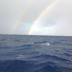 Ease the main... sailed to Mediterranean